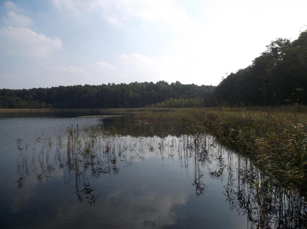 Osada Pąchy - jezioro Pąchowskie